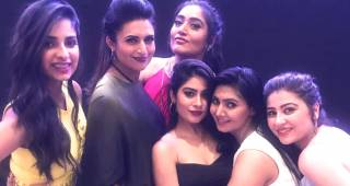 Party Pics Of Yeh Hai Mohabbatein As The Show Completes 1500 Episodes
