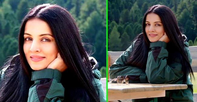Celina Jaitley is ready for her comeback in Bollywood after a gap of 7 years