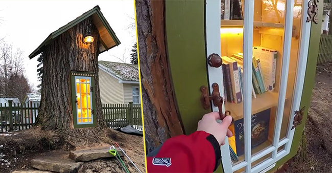 Lady Named Sharalee Armitage Turned A 110-yr-old Tree Into A Free Little Library And It's Simply beautiful