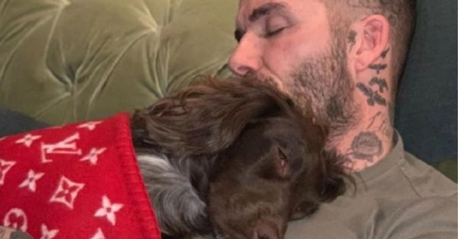 David Beckham's pet dog's blanket cost is more than an average person's annual salary, netizens go crazy