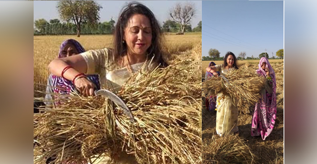 Hema Malini made fun of by Netizens over her picture she posted on Twitter