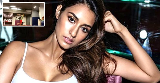 Watch: Disha Patani pulls off a stunning parkour manoeuvre & we are in awe of her fitness levels