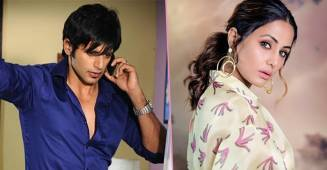 From Hina Khan to Karanvir Bohra, Actors that played negative roles and nailed it like a pro