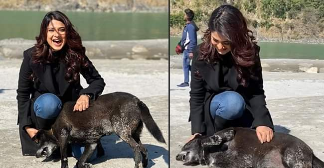 Jennifer Winget finds a furry friend in Rishikesh, share adorable pictures