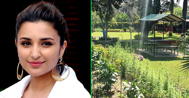 Parineeti Chopra shares pics of her beautiful Ambala home, captions 'Wish I was there right now'