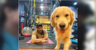 Stay home like his daddy: Hrithik sends an important message to all with his dog Zane
