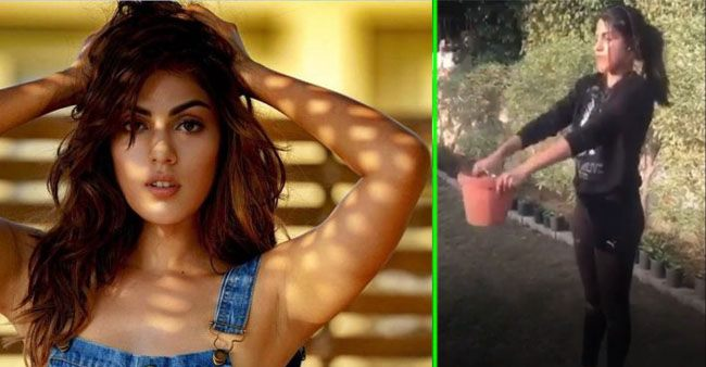 Actress Rhea Chakraborty shares a unique way of exercising with a flower pot; Watch