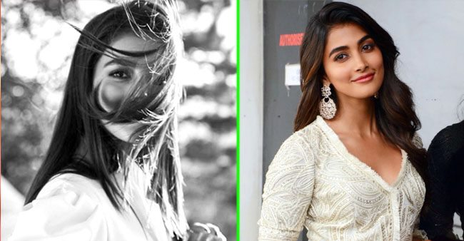 Housefull 4 fame Pooja Hegde urges fans to be happy during lockdown, shares a special pic