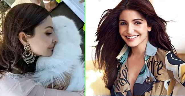 Anushka Sharma's love for her 'furry friend' is eternal and this pic proves it