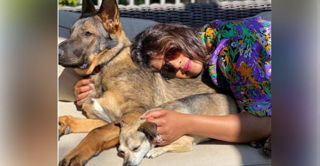 Priyanka Chopra looks beautiful as she soaks up the sun and chills with her pet dogs