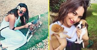 Sonakshi Sinha Is Biggest Dog Lover In Bollywood & These Pictures Are Proof