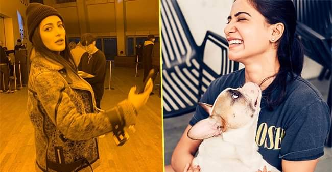 Shruti Haasan and other South Indian actresses ace in giving candid images