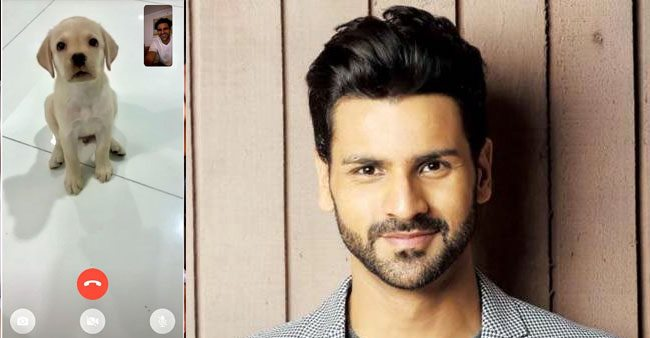 Vivek Dahiya's video call with his puppy at night is all about an unconditional love bond; See pic
