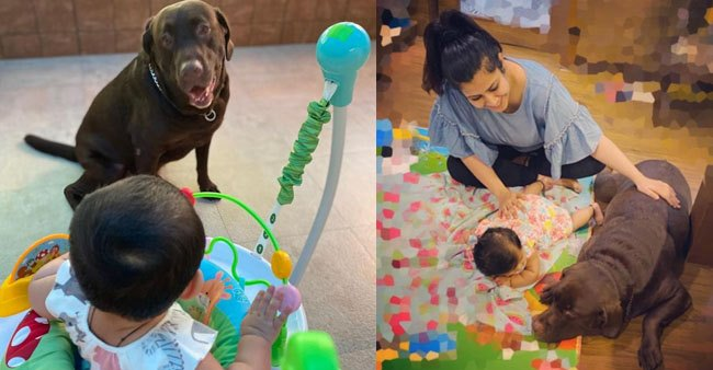 Ankita Bhargava shares pictures of her daughter, Mehr's playtime with her 'Bhaiya'