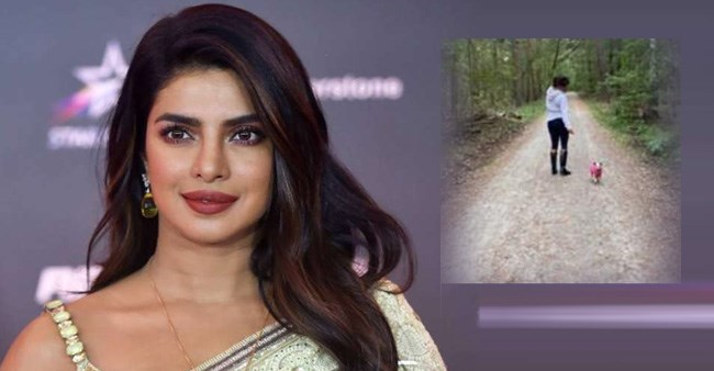 Priyanka takes a walk with her pet pooch Diana but looks like she is done with wilderness