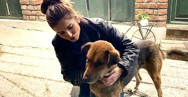 Throwback picture of actress Tara Sutaria when she plays with a dog on the streets during her vacation