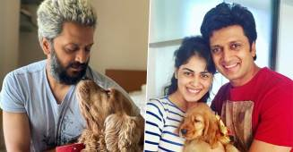 Riteish Shares A Throwback Pic With Genelia From The Day They Became Proud Parents Of Their Pooch