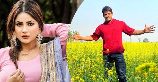 Sidharth Shukla enjoys the country lifestyle in Punjab as he channels his inner Shah Rukh Khan
