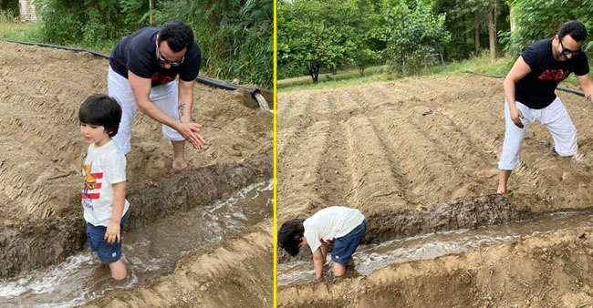 Pictures of Saif Ali Khan and Taimur farming in Pataudi Palace
