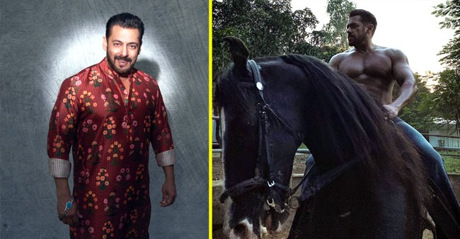 Salman Khan rides a horse and flaunts his chiselled muscles; pictures leave his fans in awe