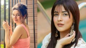 Shehnaaz Gill: an adorable post that left fans gushing over her cute look