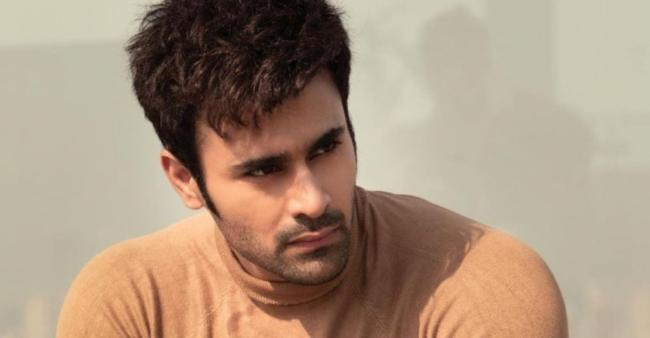 Pearl V Puri case: The co-accused got bail by the sessions court