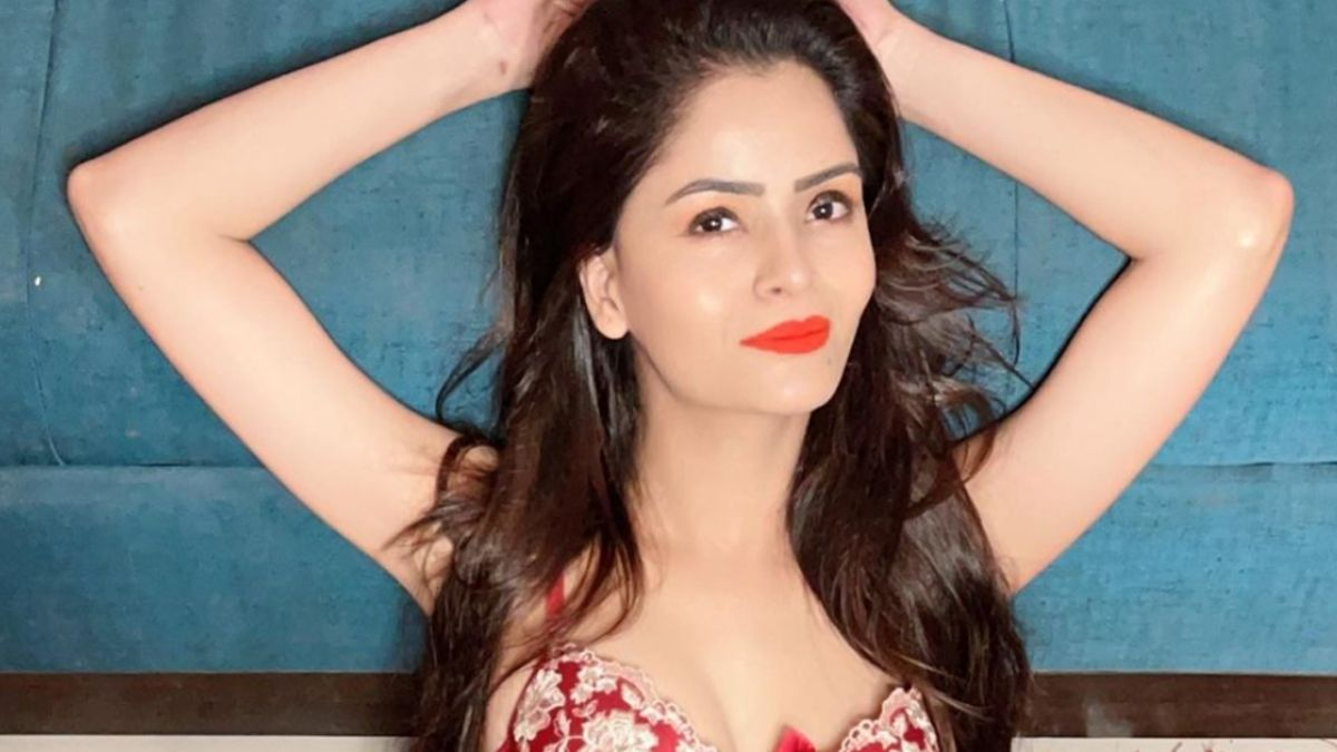 Gehana Vasisth held a nude live session on Instagram, asks fans if it can be considered as porn